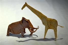 قاعة فنون في اليابان تعرض أشكال وإبداعات