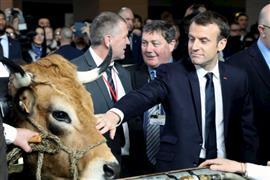 الرئيس الفرنسى يحرص على التقاط صورة مع ب...