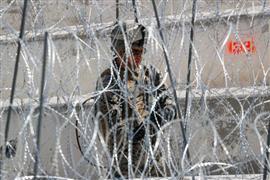 أعمال القوات الأمريكية على الحدود مع المكسيك