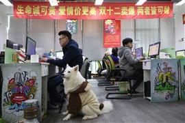 شركة صينية تسمح لموظفيها باصطحاب حيواناتهم