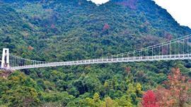افتتاح جسر زجاجى للزوار في جنوب الصين