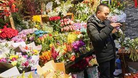 باعة الزهور يستعدون لعيد الحب