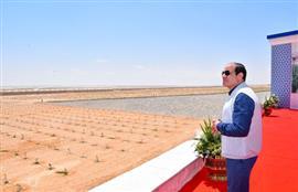 الرئيس السيسي يفتتح مشروعات الصوب الزراعية