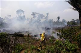 حرق جزء من غابة الأمازون أثناء تطهيرها