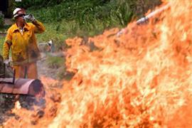حرائق الغابات في إستراليا