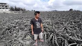 غطاء من رماد البركان يحيط الفلبين