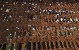البرازيل تحفر مقابر جماعية جديدة لضحايا ...