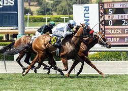 سباق خيول سانتا انيتا في الولايات المتحدة