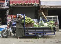 الحياة اليومية في شوارع وأحياء القاهرة