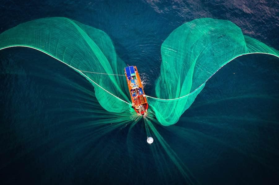 صور جوية لشبكة صيد تشبه قنديل البحر