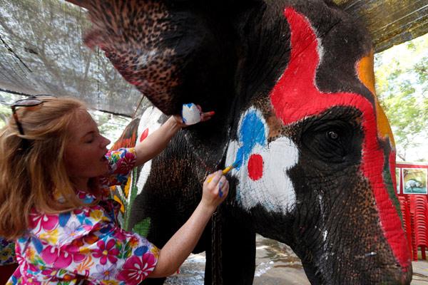 مهرجان رش المياه بالأفيال فى تايلاند
