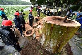 إعصار ليكيما يهدد سكان مدينة ونلينغ في الصين