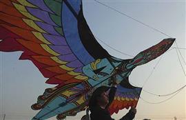 مهرجان الطائرات الورقيه فى الهند