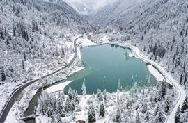 الواحة بيضاء تساقط الثلوج في منطقة داغو الجليدية جنوب غربي الصين