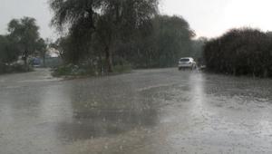 الطقس مستقر وأمطار القاهرة والسواحل