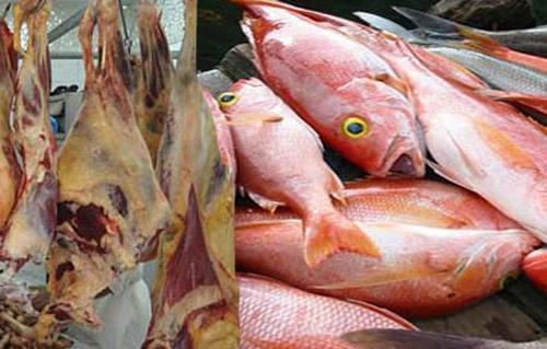 ضبط  طن أسماك ماكريل مجهولة المصدر داخل ثلاجة لحفظ السلع بالقاهرة