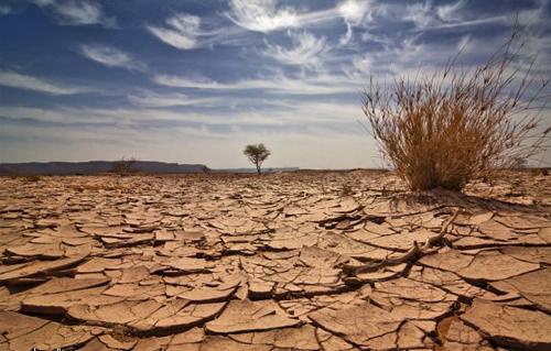 دراسة عن التغيرات المناخية: زيادة نسبة الأمطار في الصعيد وسلاسل البحر الأحمر وانتشار زراعة القطن -