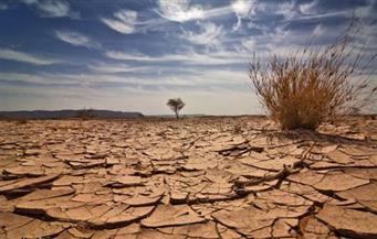 دراسة: تغير المناخ يتسبب في 37% من وفيات ارتفاع الحرارة على مستوى العالم