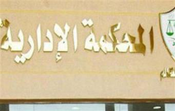 حجز طعون رئيس نادي الزمالك على أحكام القضاء الإداري للحكم