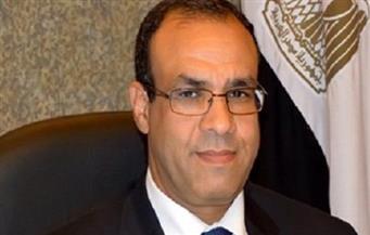 سفير مصر بألمانيا: لا وجود للإخوان أمام لجان الاستفتاء.. والإقبال كبير من الشباب |فيديو