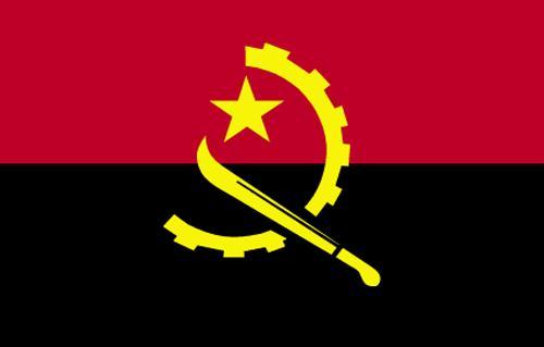 سفير أنجولا لدى الصين يدعو إلى الاستثمار بمجال الطاقة المتجددة في بلاده