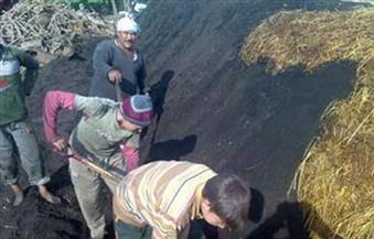 """جهاز""""دمياط الجديد"""": ندرس إزالة """"مكامير الفحم"""".. ولا تصالح على أراضي الدولة"""