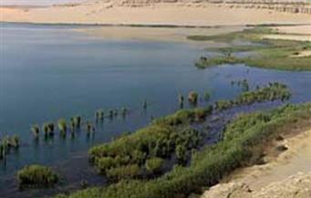 """محافظ الفيوم يكلف المسئولين بتوفير المياه للمزارع السمكية والكهرباء للمركز الاستكشافي بـ""""بحيرة قارون"""""""