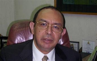 """""""ميريس"""": تعديل تصنيف مصر إلى """"إيجابي"""" يمهد لرفعه خلال عام"""