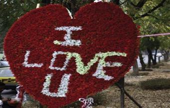 ارتفاع أسعار الورود في ألمانيا مع اقتراب عيد الحب