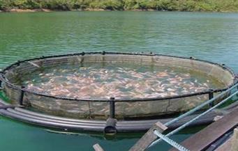 دمياط تبحث الاستفادة من تكريك بحيرة المنزلة لتطوير المزرعة السمكية بالرطمة