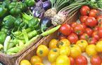 التموين: مصر العاشر عالميا بمؤشر الأمن الغذائي.. والتجارة الداخلية تساهم بـ1.2 تريليون في الناتج الإجمالي