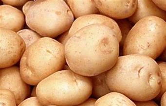 ضبط 1155 طن بطاطس في مخازن المحتكرين بـ4 محافظات
