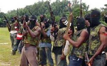 هجوم على مخيم في النيجر يأوي نازحين فروا من بوكو حرام