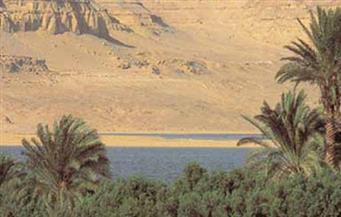 اليوم.. انطلاق الملتقى الاقتصادي العربي الأول للسياحة البيئية والمحميات