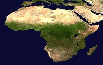 علي شلش والأدب الإفريقي