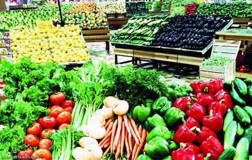 التنمية المحلية تعاون بين الوزارة وبرنامج الغذاء العالمي في مشروعات الحاصلات الزراعية