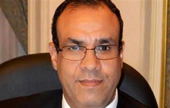 """سفير مصر بألمانيا لـ""""بوابة الأهرام"""": نقل الاقتراع بالانتخابات الرئاسية على الهواء مباشرة"""
