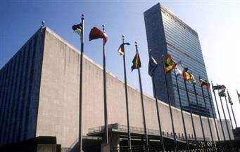 """أقباط من أجل الوطن: تأييد """"السيسي"""" أمام مقر الأمم المتحدة """"واجب وطني"""""""