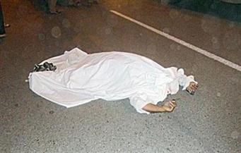 مصرع طفل صدمته سيارة على طريق بحر البقر جنوب بورسعيد