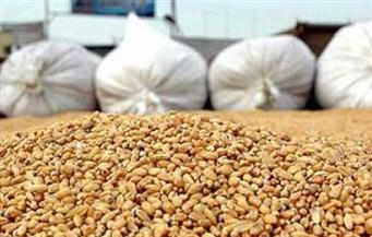 تعرف على حقيقة إيقاف الإجراءات الرقابية على شحنات القمح المستوردة من الخارج