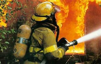 """حريق يلتهم عددًا من أشجار المانجو والعنب بمزرعة """"زكريا عزمي"""" بأسوان"""