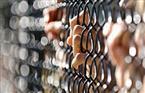 """تأجيل محاكمة المتهمين في """"خلية الجيزة"""" لجلسة 26 أبريل"""