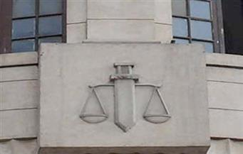 براءة 7 محامين من تهمة التظاهر دون تصريح بالإسكندرية
