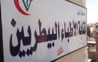 44 مرشحا بانتخابات التجديد النصفي بـ«البيطريين» في أول يومين