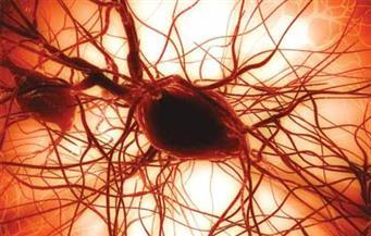 أستاذ بجامعة هارفارد: ما يشاع عن العلاج بالخلايا الجذعية «نصب»