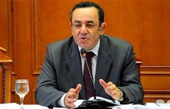 الشوبكي: المصالحة مع الإخوان على نهج السادات لن تتكرر