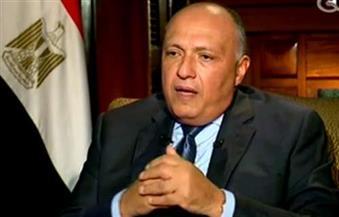 وزير الخارجية يصل القاهرة قادمًا من نيويورك