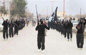 """تنظيم داعش يختار """"والي تابع"""" لجماعة بوكو حرام في نيجيريا"""