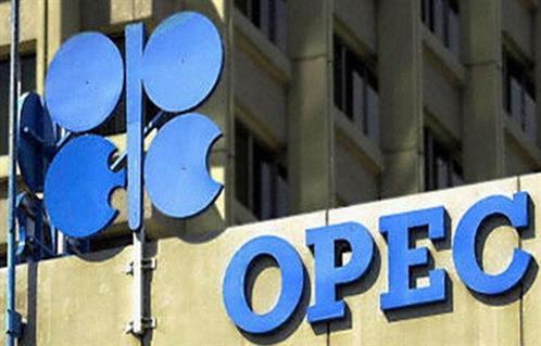 ;أوبك; تتجه لخفض توقعاتها المتفائلة للطلب على النفط