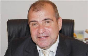 سفير مصر بالجزائر: فرز أصوات انتخابات مجلس الشيوخ وإرسالها لهيئة الانتخابات